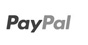 pay with paypal option